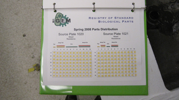 igem-catalogue.jpg