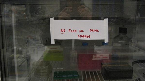nofood.jpg